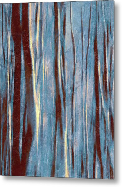 Dawn In The Winter Forest - Landscape Mood Lighting Metal Print