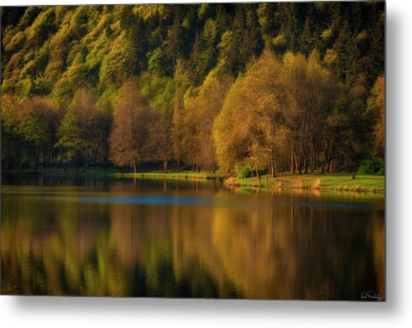 Dawn's Light Along A Lakes Shore Metal Print
