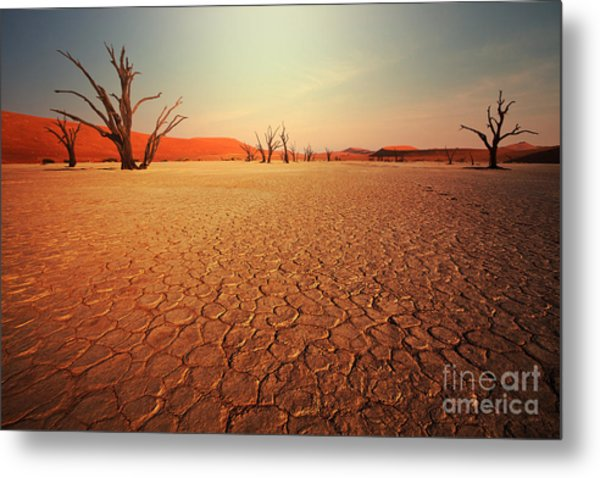 Dead Valley In Namibia Metal Print