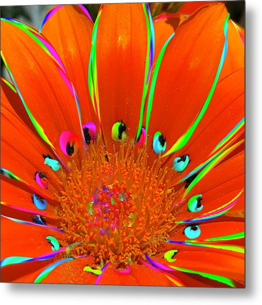 Deep Coral Bloom  Metal Print