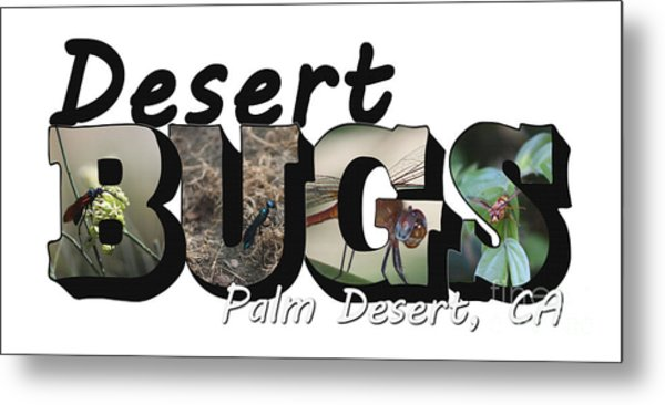 Desert Bugs Big Letter Metal Print