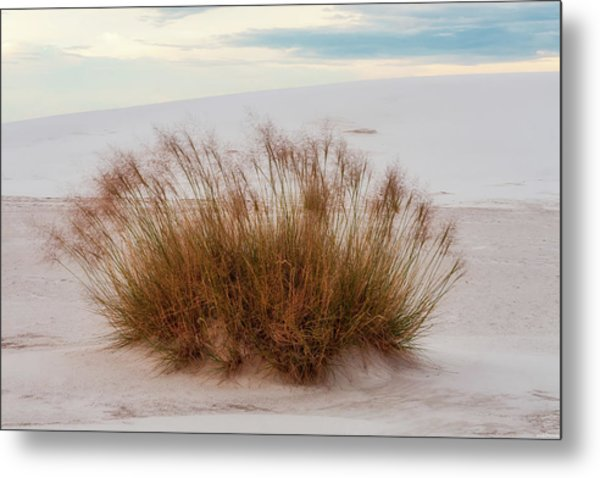 Metal Print featuring the photograph Desert Dwelling by Rick Furmanek