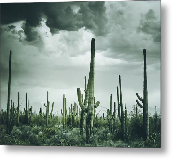 Desert Storm In Arizona Metal Print