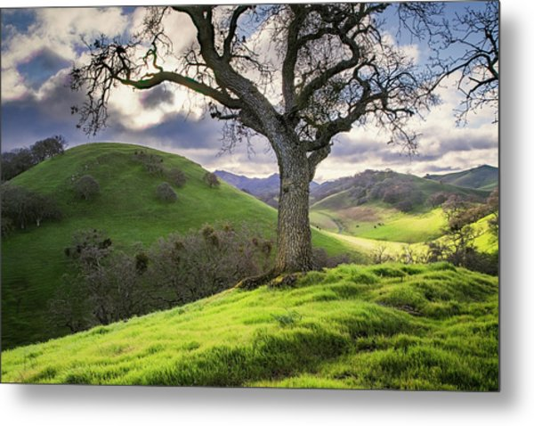 Diablo Winter Hills Metal Print by Vincent James
