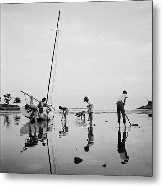 Digging For Clams Metal Print