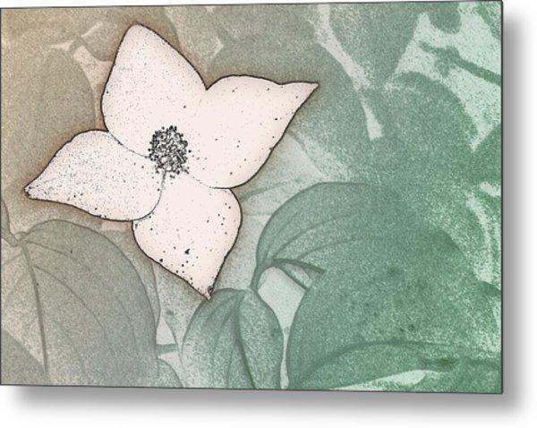 Dogwood Flower Stencil On Sandstone Metal Print