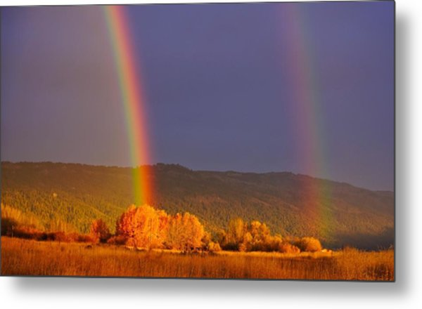 Double Gold Metal Print