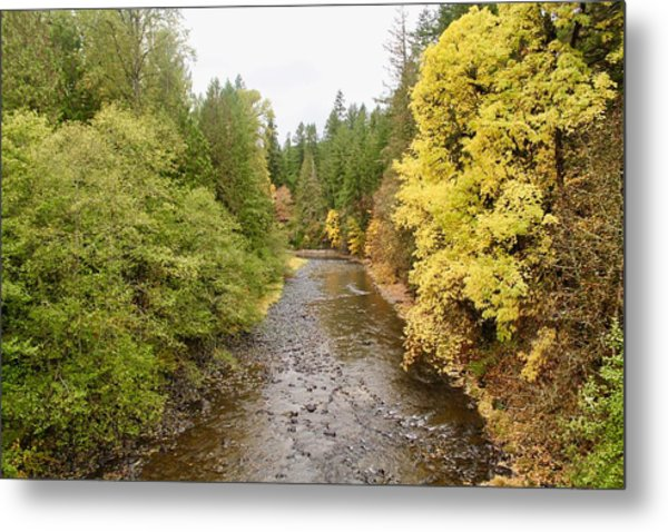 Down The Molalla Metal Print