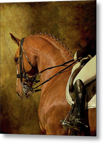 Dressage Horse And Rider Metal Print