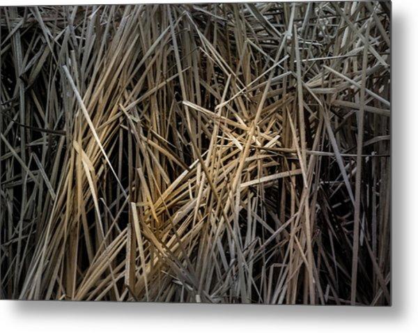 Dried Wild Grass IIi Metal Print