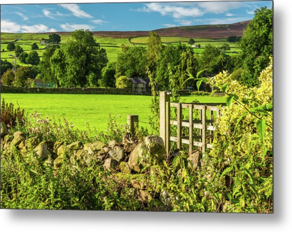 Drystone Wall, Reeth, Yorkshire Dales Metal Print by David Ross