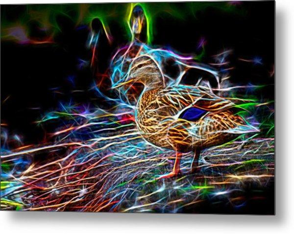 Ducks On Shore Wizard Metal Print