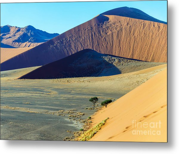 Dunes In Sossusvlei Plato Of Namib Metal Print