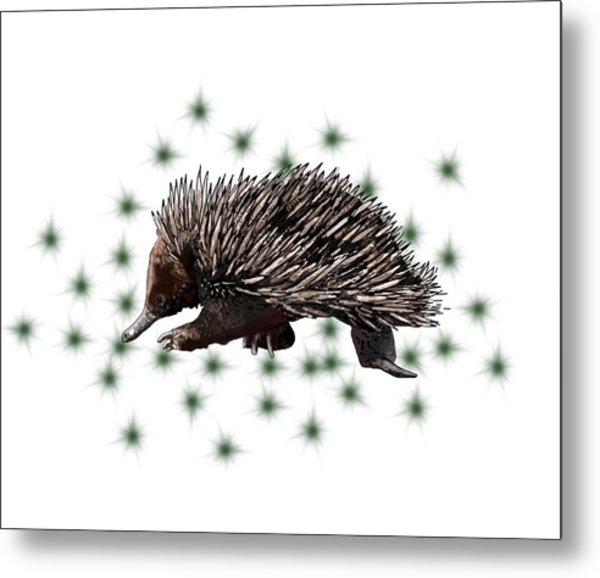 E Is For Echidna Metal Print