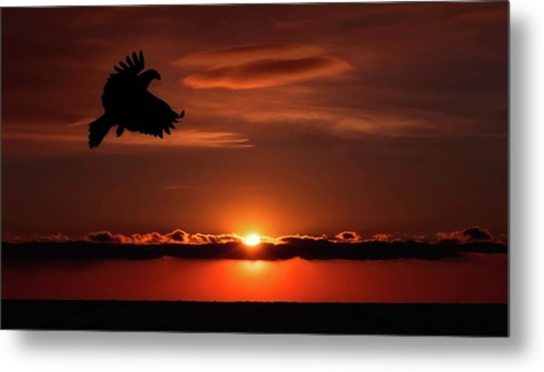 Eagle In A Red Sky Metal Print