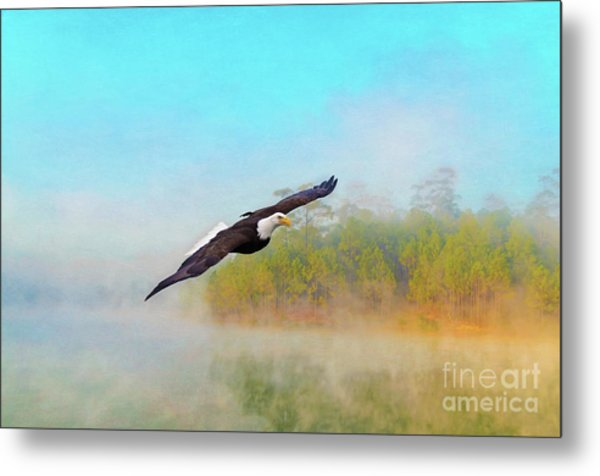 Eagle Out Of The Mist Metal Print