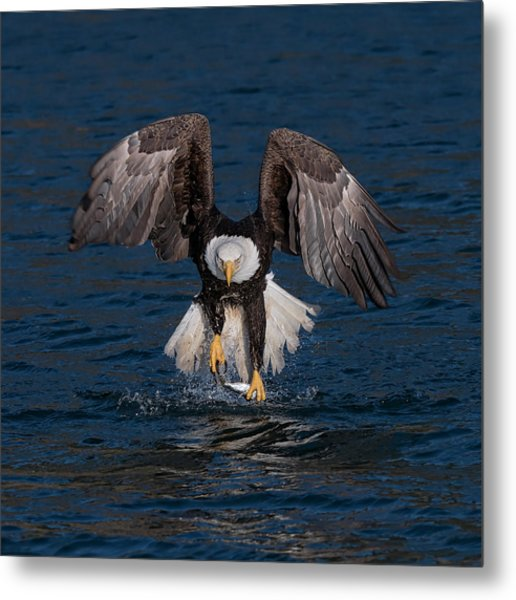 Deadly Catch Metal Print