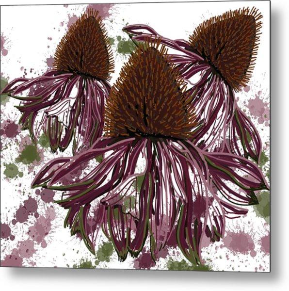 Echinacea Flowers Line Metal Print