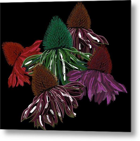Echinacea Flowers With Black Metal Print