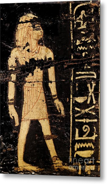 Metal Print featuring the photograph Egyptian Immortal Art by Sue Harper