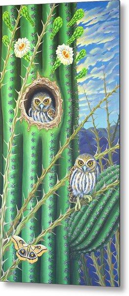 Elf Owls In The Saguaro Cactus Metal Print