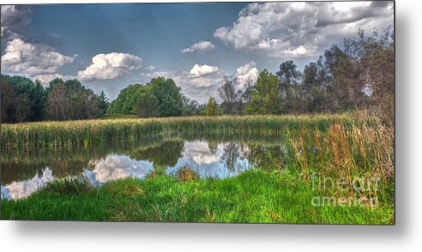 Ellis Pond Metal Print