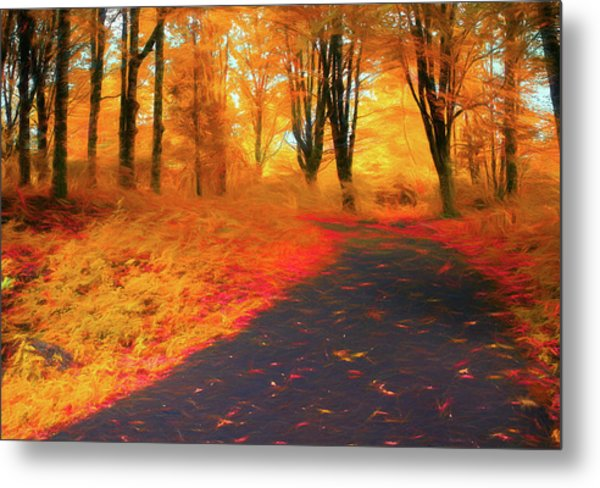 Emmaus Community Park Path - Colors Of Fall Metal Print
