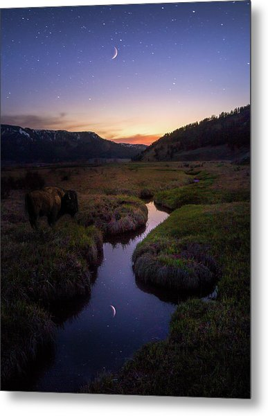 Metal Print featuring the photograph Enchanting Yellowstone / Yellowstone National Park  by Nicholas Parker