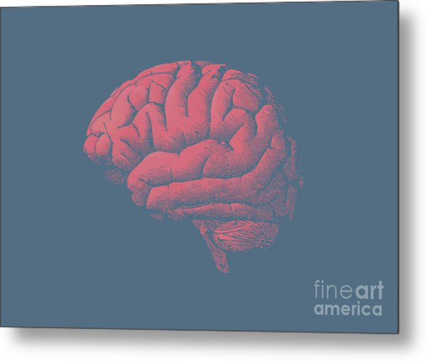 Engraving Brain Illustration With Tint Metal Print