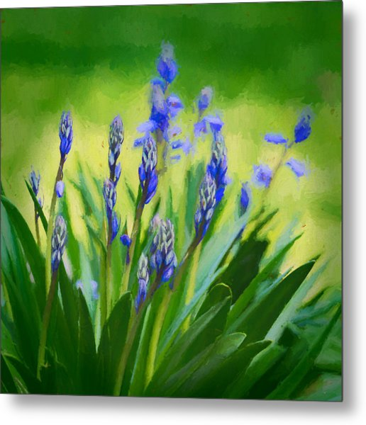 Metal Print featuring the photograph Essense Of Spring by Kristi Swift