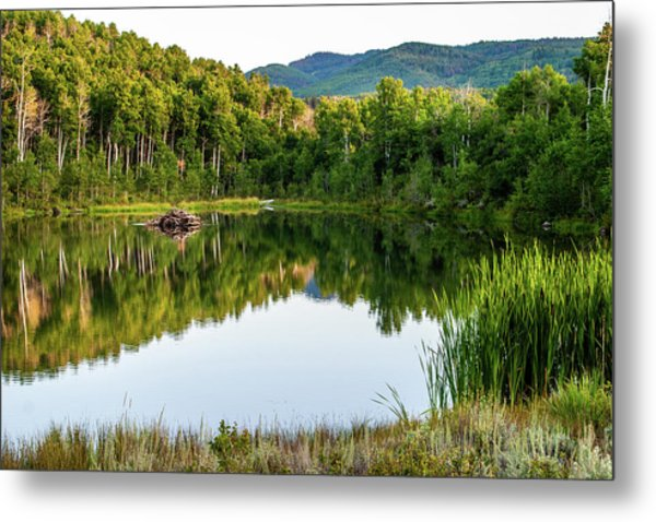Metal Print featuring the photograph Evening At Ivie Pond by TL Mair