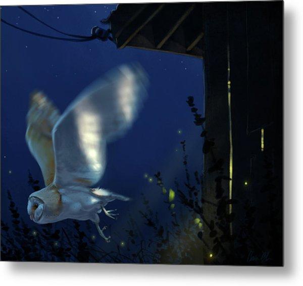 Evening Ghost - Barn Owl Metal Print