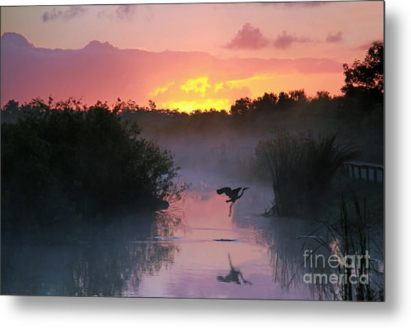 Everglades National Park At Sunrise Metal Print
