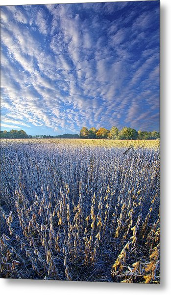 Metal Print featuring the photograph Every Moment Spent by Phil Koch