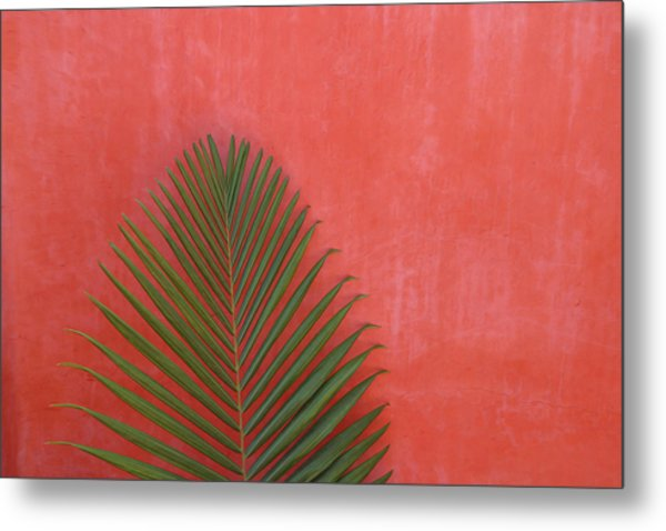 Exotic Background Metal Print