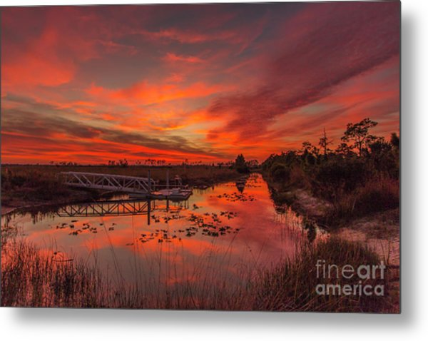 Metal Print featuring the photograph Explosive Sunset At Pine Glades by Tom Claud