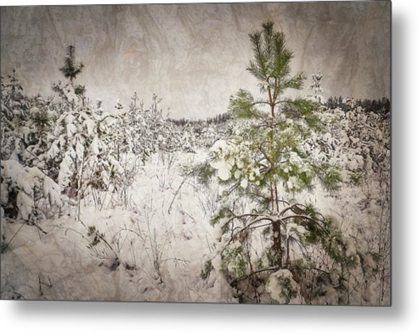 Fairytale Of Winter Forest. Shchymel, 2018. Metal Print