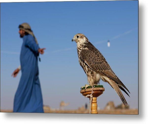 Falconery In Sakakah, Saudi Arabia On Metal Print