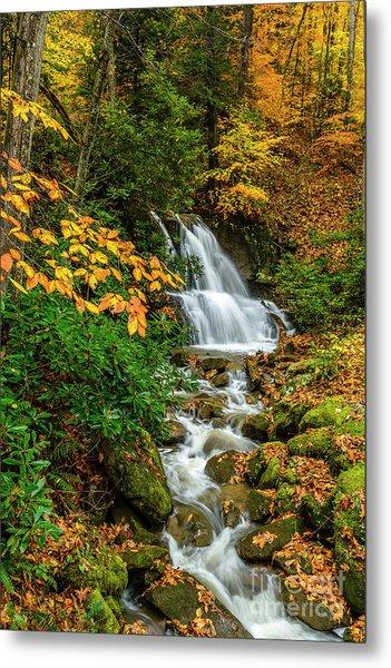 Fall Color Back Fork Waterfall Metal Print