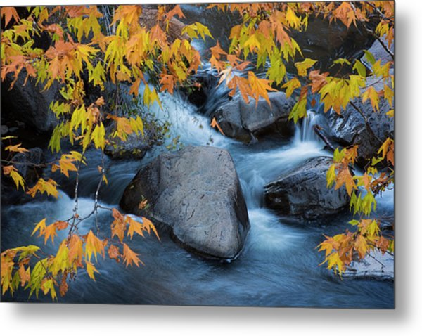 Fall Colors At Slide Rock Arizona Metal Print