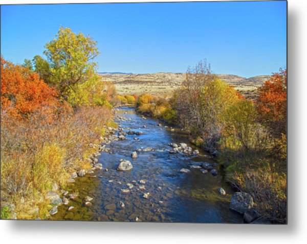 Metal Print featuring the photograph Fall Foliage In Idaho by Dart and Suze Humeston