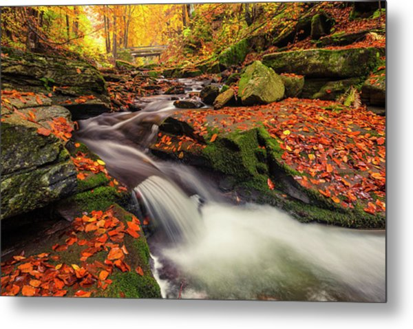 Fall Power Metal Print