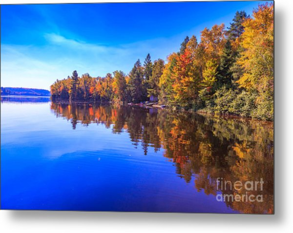 Fall Trees With Reflection Metal Print