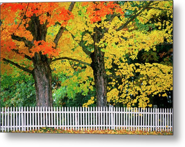 Falls Colors In New Hampshire Metal Print by Great Art Productions