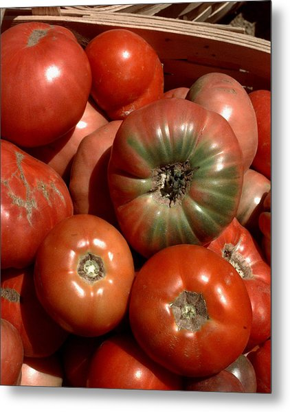 Farm-grown Tomatoes In New Paltz, N.y Metal Print