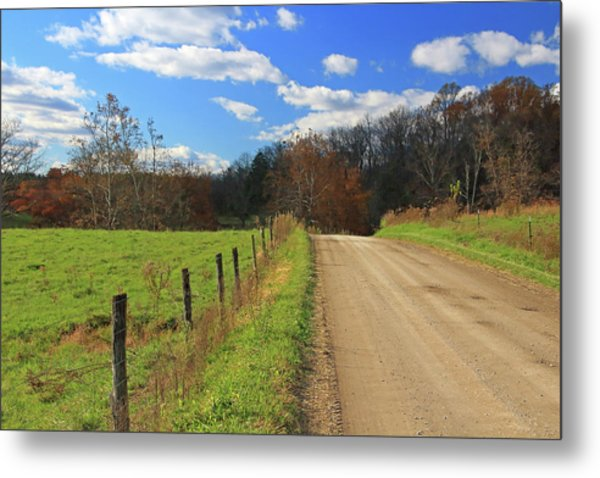 Metal Print featuring the photograph Fence And Country Road by Angela Murdock