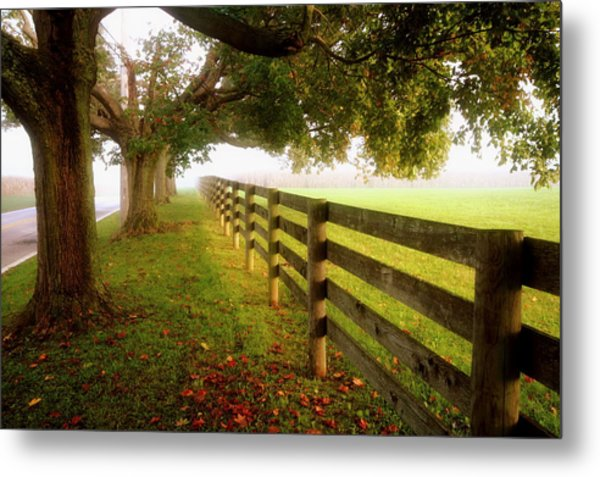 Fences And Trees Metal Print