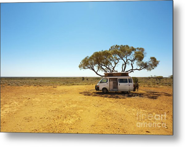 Finding Shade Under A Lone Tree While Metal Print