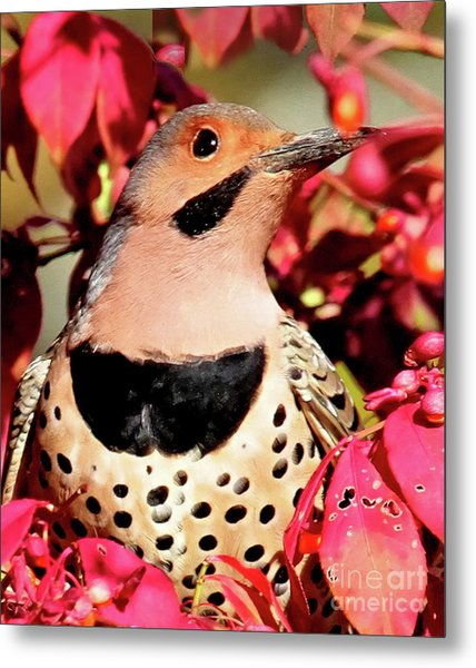 Fire Bush Flicker Metal Print