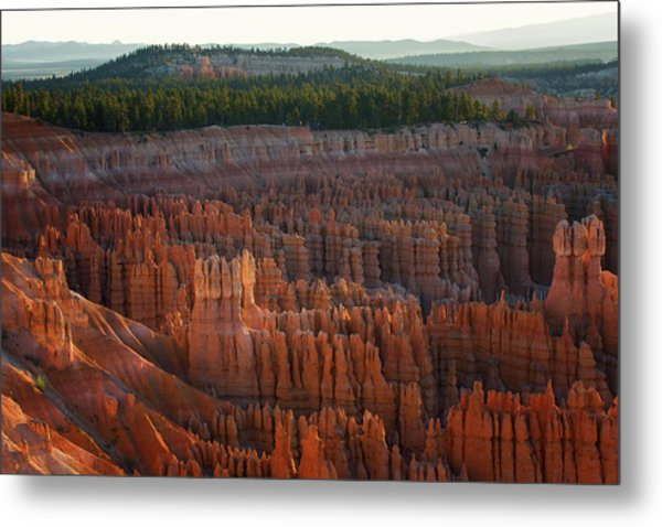 First Light On The Hoodoo Inspiration Point Bryce Canyon National Park Metal Print